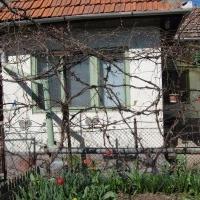 Vanzare Casa In Sebes , Zona Centrala 40.000 Euro Neg