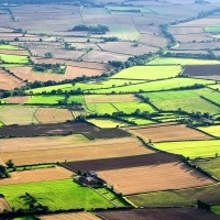 Cumparam Terenuri Agricole/Arabile in Sebes, Lancram, Petresti