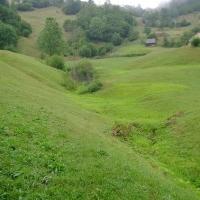 Teren 11700 Mp Transalpina, Valea Sebesului. Baraj Tau