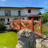 Vila Cu Piscina De Vanzare In Sebes, Zona Centrala
