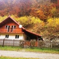 Cabana De Vanzare Pe Valea Dobrei, Judetul Alba